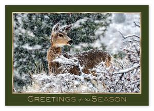 HP14309 Woodland Visitor Holiday Card 7 7/8