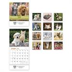 765871 Puppies & Kittens Miniature Wall Calendars 6 x 13