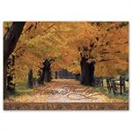 H16664 Great Fall Thanksgiving Cards 7 7/8 x 5 5/8