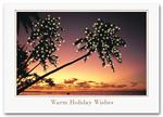 H55306 Palm Trees Holiday Card Island Illumination