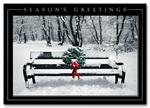 HH1641 Quiet Celebration Holiday Card