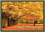 HP13309 - N3309 Canopy of Gold Thanksgiving Cards 7 7/8 x 5 5/8