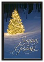 HP15302 - N1530 Shimmering Evergreen Holiday Cards 5 5/8 x 7 7/8