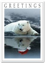 HP2314 Polar Wishes Holiday Card