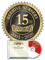 FDS07 Fossler Digital Anniversary Seal DS-07 1 3/4