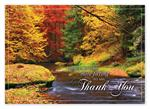 HP14319 - N4319 Splashes of Color Thanksgiving Cards 7 7/8 x 5 5/8