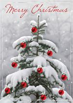 H08605 Snow Wonder Christmas Cards 5 5/8