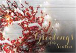 H08650 Sprinkle of Sparkle Holiday Cards 7 7/8