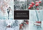 H08664 Winter Charm Holiday Cards 7 7/8