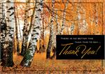 HP02308 Amber Appreciation Thanksgiving Cards 7 7/8 x 5 5/8