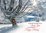 HP02316 Striking Gratitude Holiday Cards 7 7/8 x 5 5/8